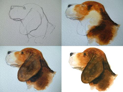 サンプル犬.jpg