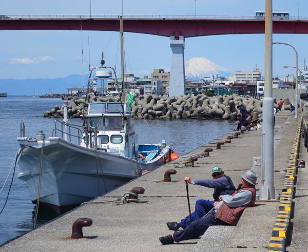 三崎漁港.jpg
