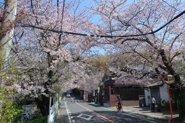 鎌倉山.jpg